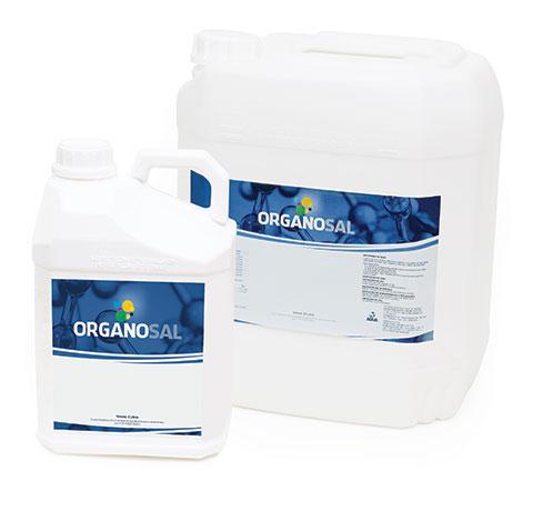 organo-sal